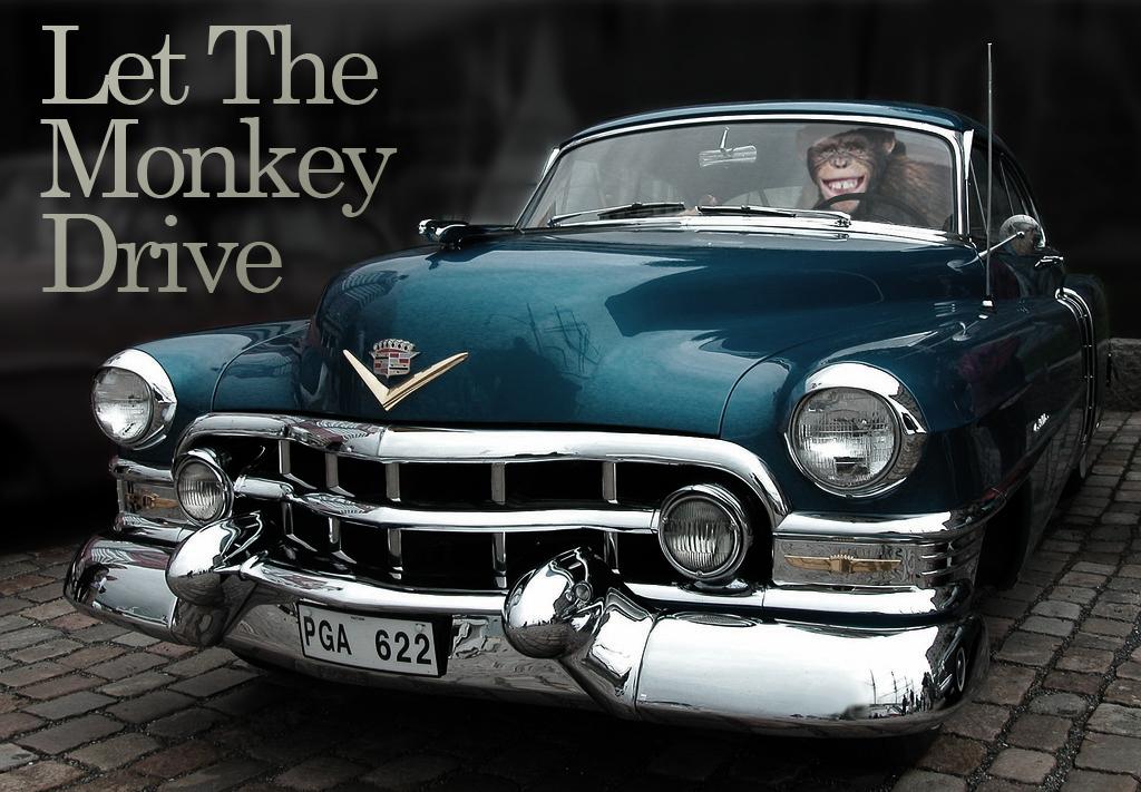 LetTheMonkeyDrive.jpg